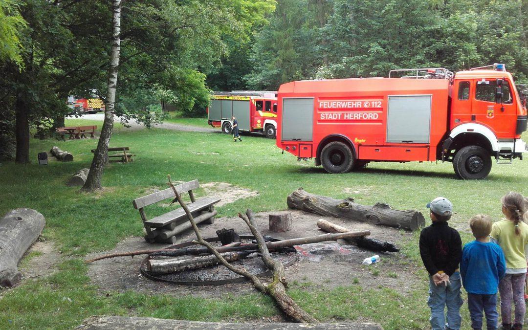 Feuerwehr im Wald